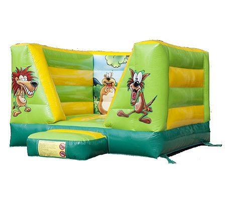 Lovely little inflatable castle